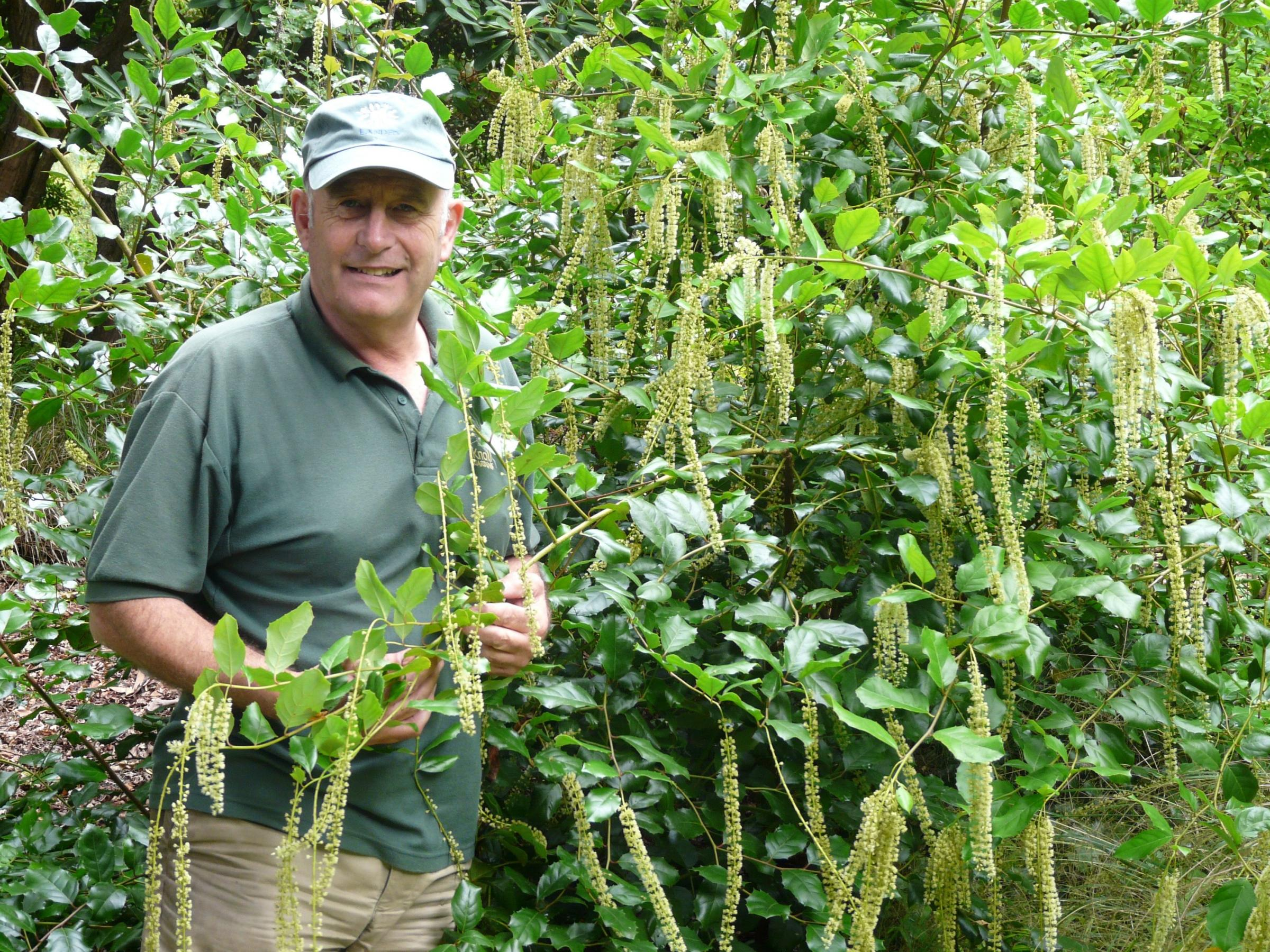 Lessons from the master of grasses as Neil Lucas marks 25 years at Knoll Gardens